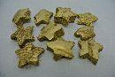 Cocos Stern GOLD 3420 01 5cm