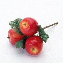 Apfelpick ROT-GELB  10865 x3   Länge 12 cm