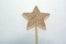 Stern-Stecker aus Holz NATUR  13274 5x0,9cm