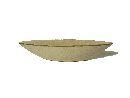 Schale Schiff CREME 430024 60x13xH12cm