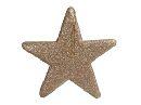 Dekohänger Glitter CHAMPAGNER Stern 40x40cm 227107