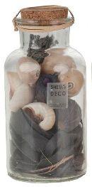 Natur-Deko-Mix in Flaschen Natur 14738 726 Muscheln+Naturmix
