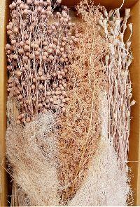 Gräsersortiment ROSÉ 350 Gramm 5300P