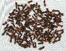 Nelken, Gewürznelken NATUR 8010 200 Gramm