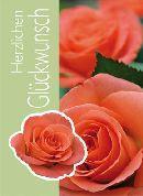 Minikarten Farbe: rot - grün Herzlichen Glückwunsch