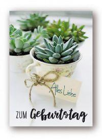 Minikarten Alles Liebe zum Geburtstag Urban Jungle 9414 Holzklammer