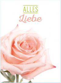 Minikarten ALLES LIEBE K7705 Floralia mit Holzklammer