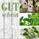 Gutschein Grün Garten 6347 Merci Gutschein 12 cm