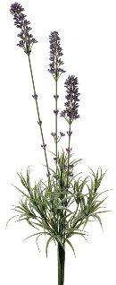 Lavendel Busch LAVENDEL 02217 x3 L=43cm