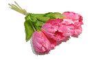 Tulpen PINK 710 30cm 15St.Btl.