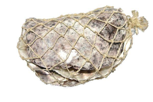 Muschel Placuna Placenta NATUR  23874 ca.8-13cm  220g  5-7 Stück