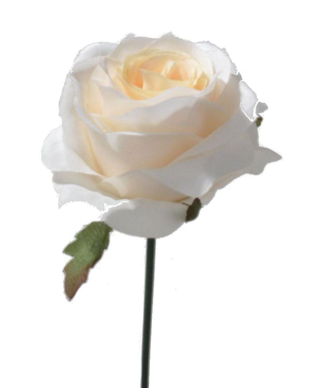 Rose Elena weiss  113912-11 Ø10cm  Länge=19cm