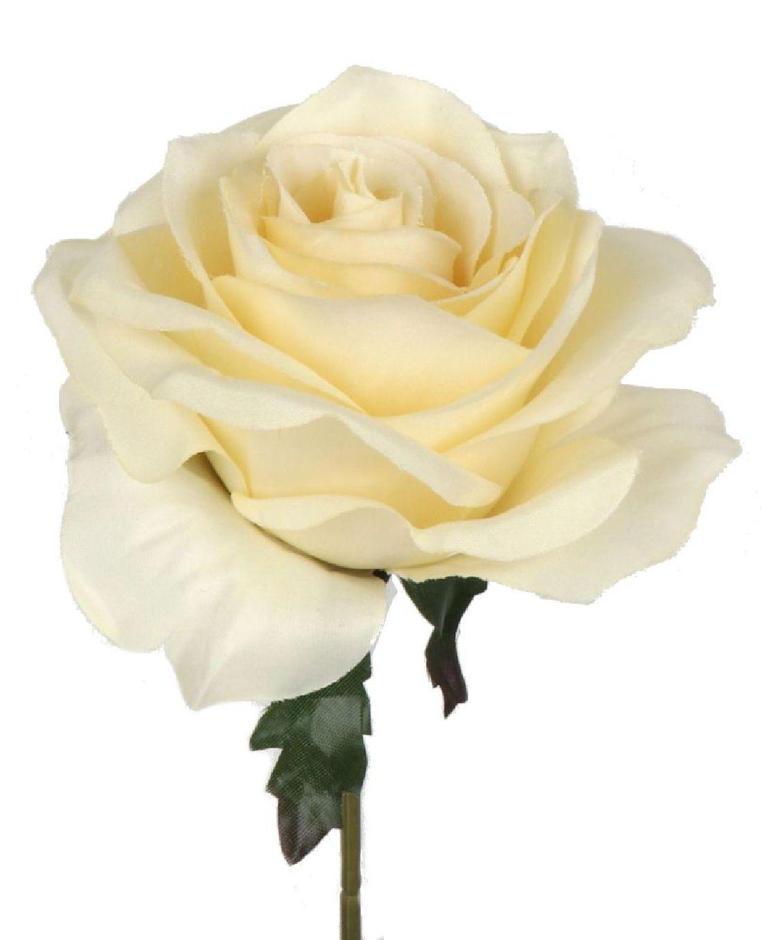 Rose Elena creme 113912-12 Ø10cm  Länge=19cm
