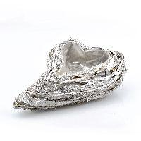Pflanzgefäße Twig GRAU-WASHED 23 009 Herz L35xB25xH9cm